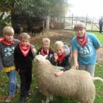 Bezoekje aan de kinderboerderij